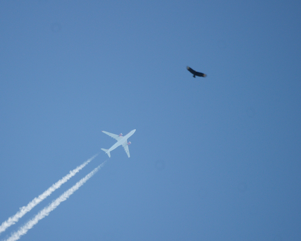 Voyage sncf com avion