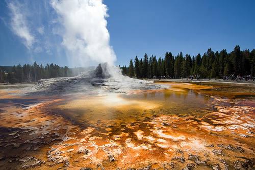 Castle Geyser à Yellowstone