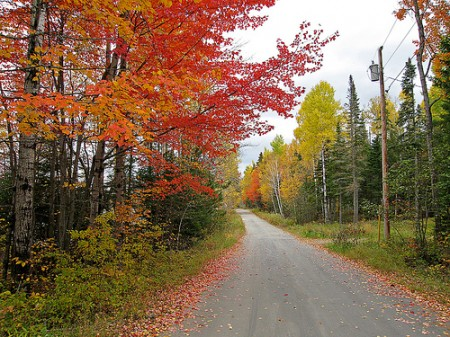 Autumn in Maine (photo: pfly)