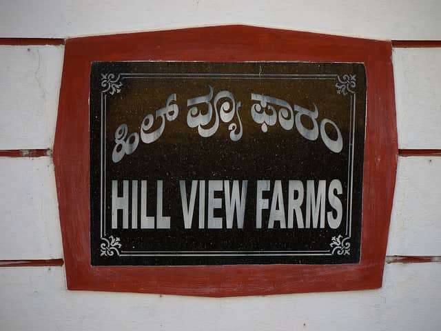 hillview-farms