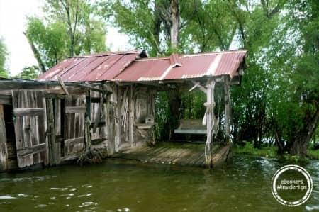 Balade en barque sur les bayous de Louisiane