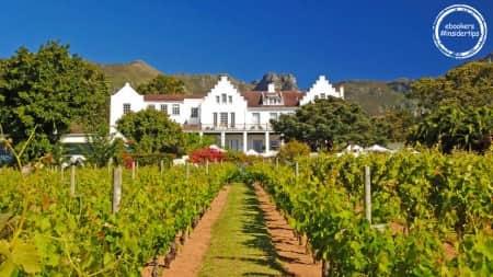 Vignoble aux environs du Cap