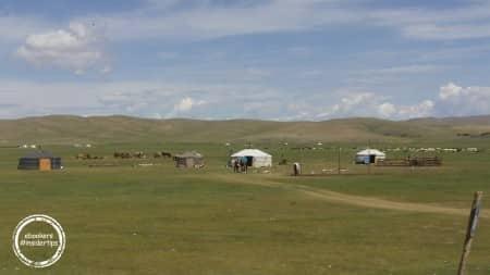 Yourtes mongoles