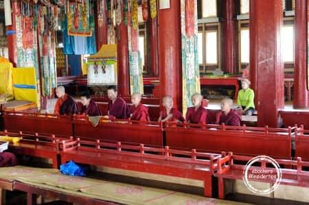 Jeunes moines au monastère Amarbayasgalant