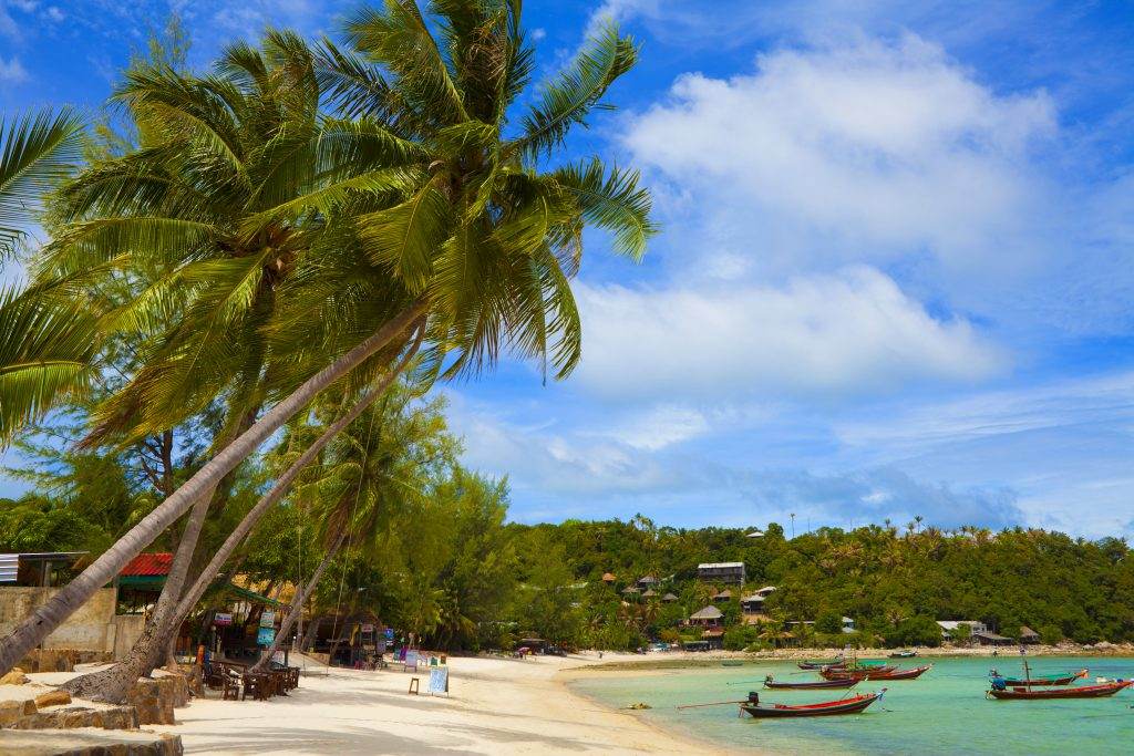 Pirate Bay beach in Ko Phangan Thailand. View on the ocean, white sand, palmtrees and turquoise sea.