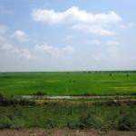 Felder vor den Floating Villages