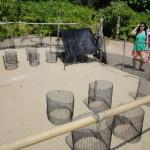 Brutstätte der Meeresschildkröten
