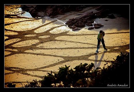 Jersey Beach Art Festival