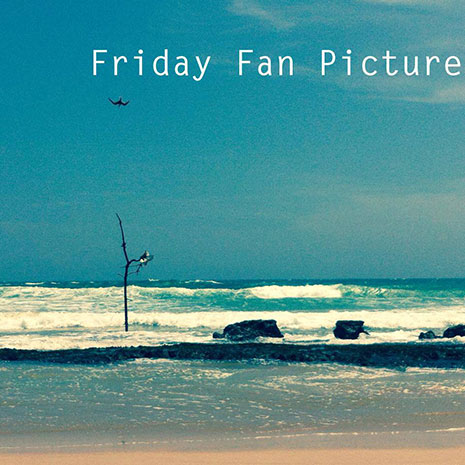 Friday-Fan-Picture_465