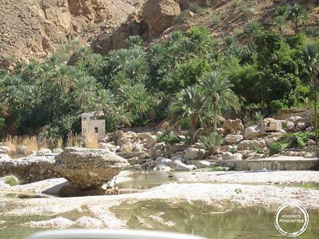 Oman_Insidertips_Elena (19)