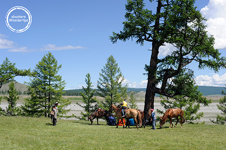 15-Horses-and-people-in-nature
